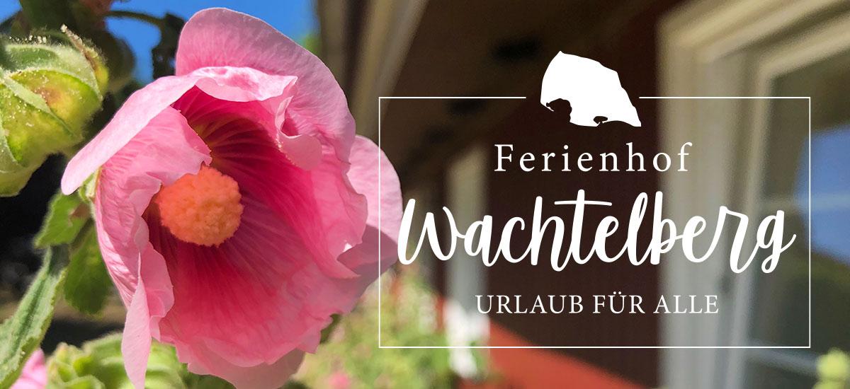 Ferienhof Wachtelberg